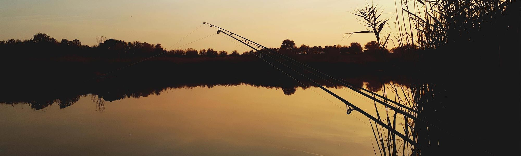 Hainaut-Pêche